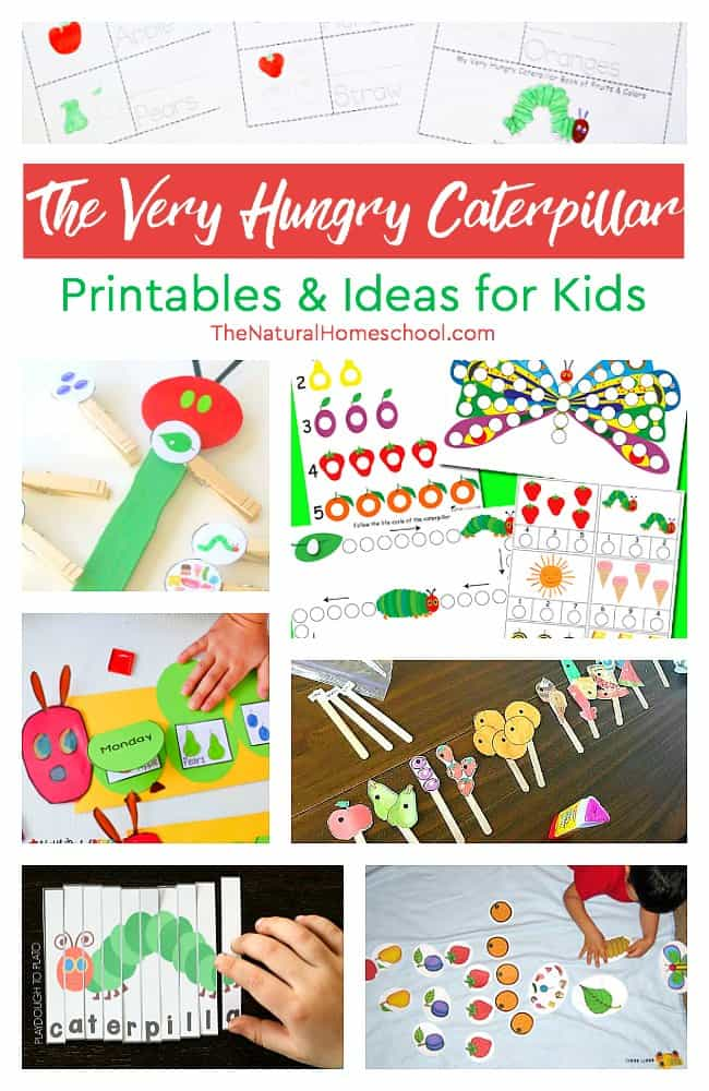 graphic regarding Very Hungry Caterpillar Printable Activities known as The Highest Unbelievable The Incredibly Hungry Caterpillar Printables