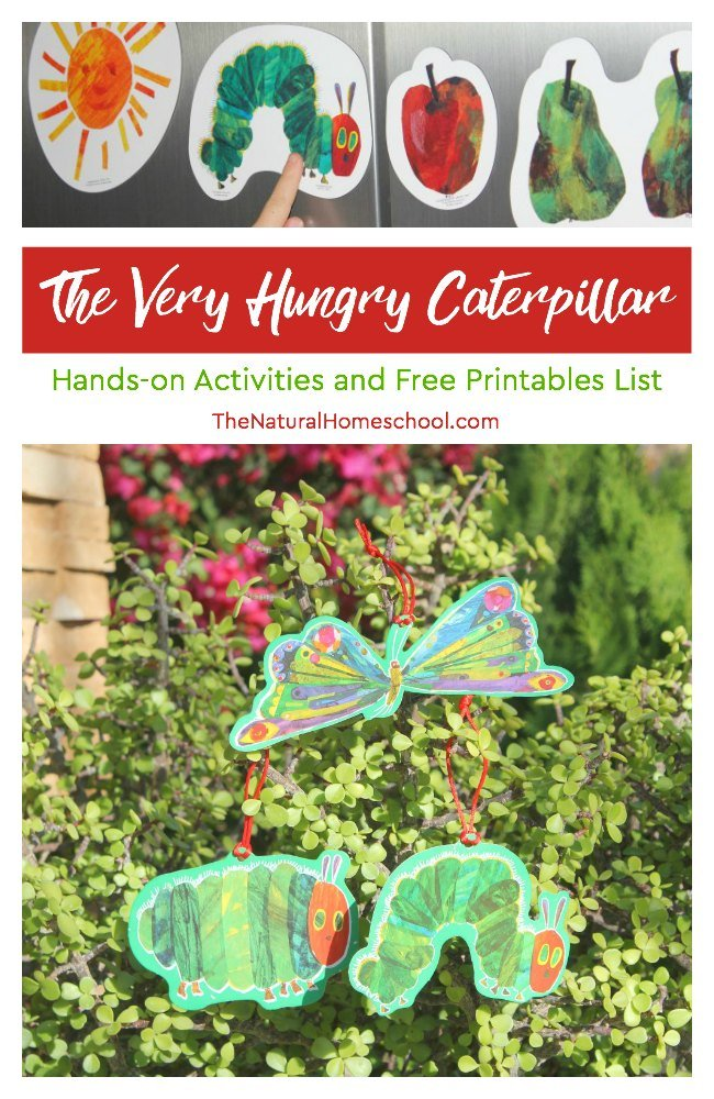 graphic about Very Hungry Caterpillar Printable Activities identified as The Extremely Hungry Caterpillar Pursuits and Free of charge Printables