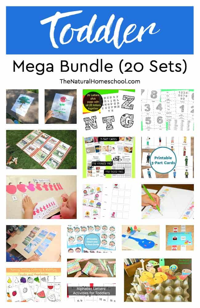 photo about Toddler Printable named Baby Printable Mega Package (20 Sets) - The Organic and natural Homeschool