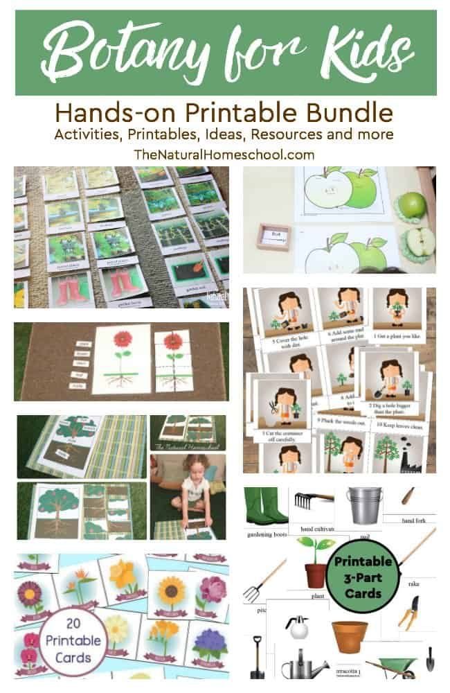 We are so excited about this wonderful printable bundle of Botany for Kids! It is full of fun hands-on activities, educational printables, inspiring ideas, helpful resources and more! Come and take a look at what this fantastic bundle includes!