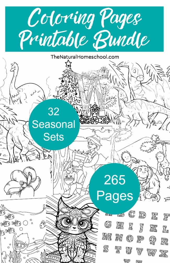In this bundle of coloring pages for kids, we have 32 sets of 265 printable pages total. We have 8 sets for each of the four seasons.