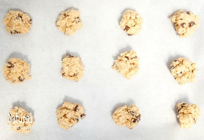 We love homemade oatmeal cookies, especially those that have easy oatmeal cookie recipes! So sit back and check out our list here with some healthier variations.