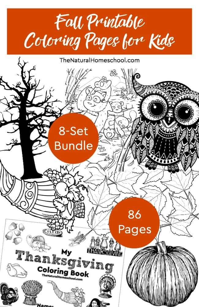 We are excited that Fall is coming soon! It is so much fun to watch the leaves change color, for school to start again and for us to start wearing sweaters and drink hot drinks! We have a wonderful bundle for you! Here are some fun Fall Printable Coloring Pages for Kids! It is an awesome 8-Set bundle with 86 pages in all!
