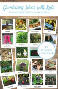 Gardening Ideas with Kids (Printable Photo 3-Part Cards)