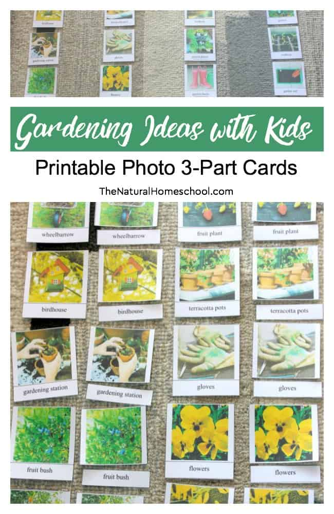 Gardening Ideas with Kids (Printable Photo 3-Part Cards) - The ...