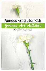 Famous Artists for Kids ~ Linnaeus Art Activities
