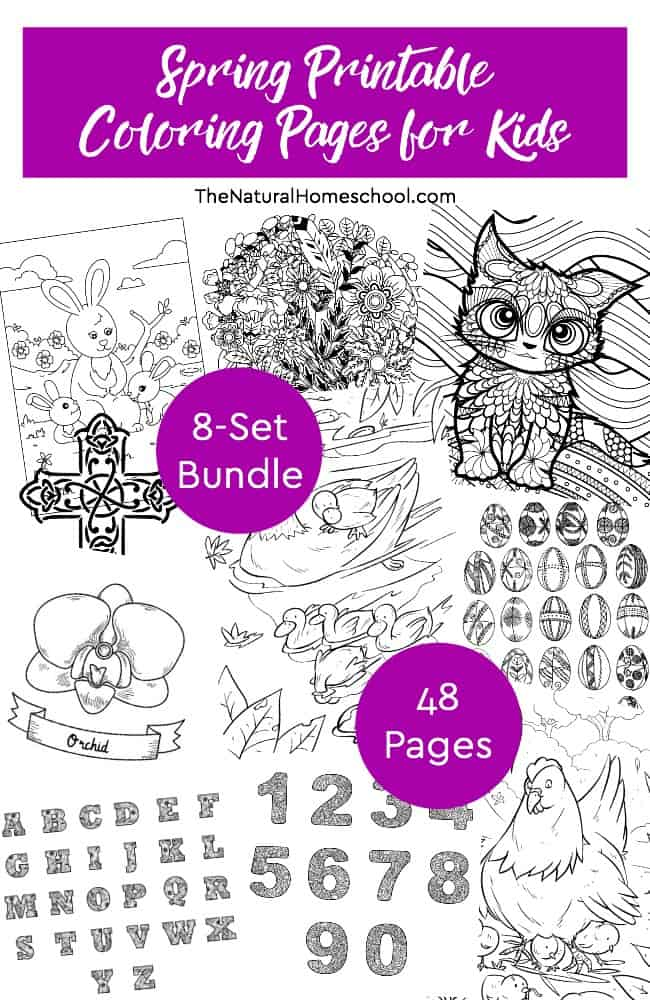 photo regarding Spring Printable titled Spring Printable Coloring Internet pages for Small children ~ 8-Preset Package