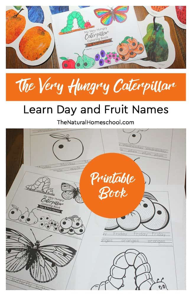 Here is a super fun The Very Hungry Caterpillar Craft ~ Day and Fruit Names Printable Book that goes perfectly with the adorable children's book by Eric Carle.
