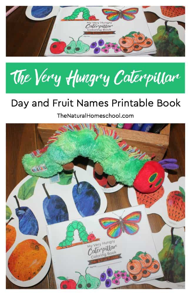 20 of The Best Very Hungry Caterpillar