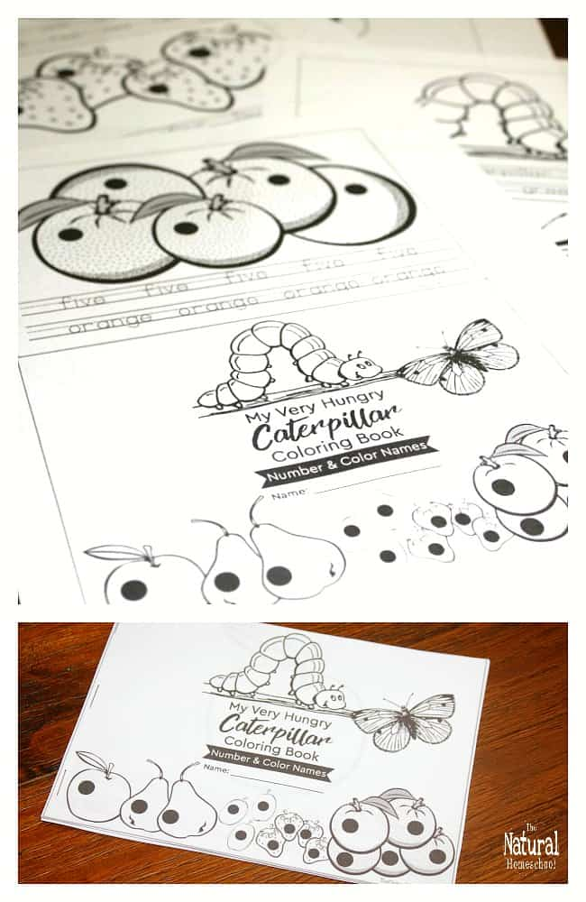 The Very Hungry Caterpillar Printable Book (Color and Number ...