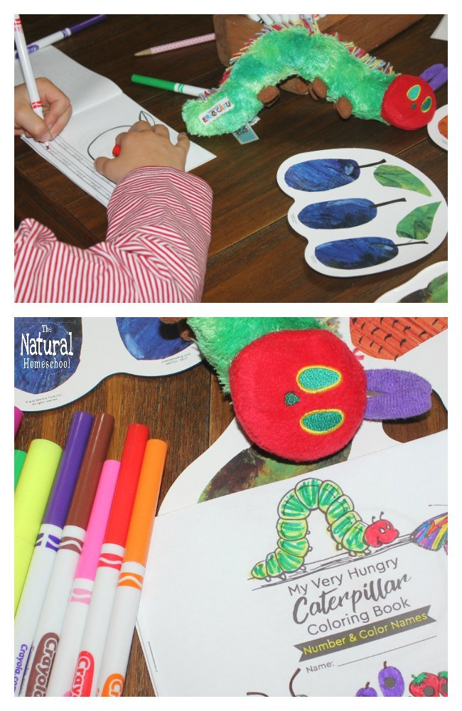 The children's book The Very Hungry Caterpillar by Eric Carle is one of the most beloved books in our home. In this post, we have a super fun activity: The Very Hungry Caterpillar printable book!