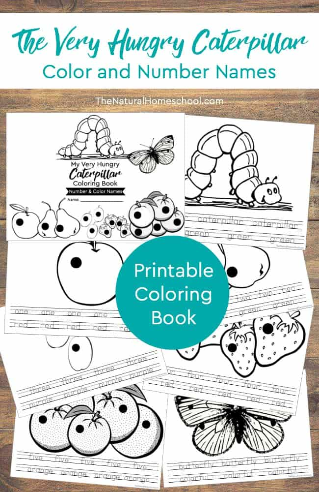 The Very Hungry Caterpillar Printable Book (Color and Number Names ...