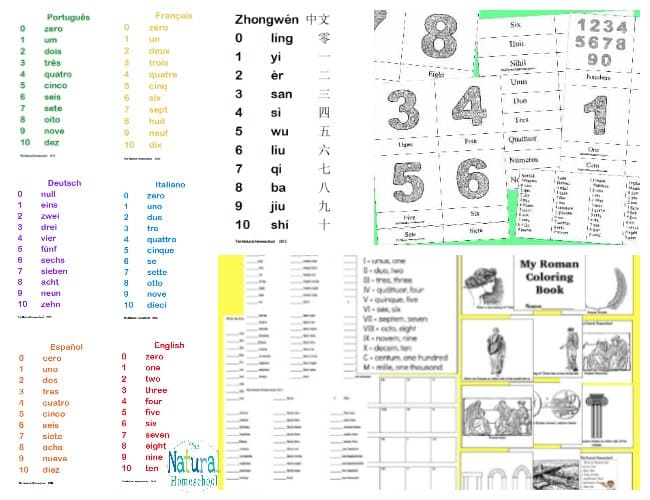 I started making our own hands-on Math materials and they have been so helpful for us and now I am sharing them with you in this Math Printable Bundle so you don't have to reinvent the wheel all over again!