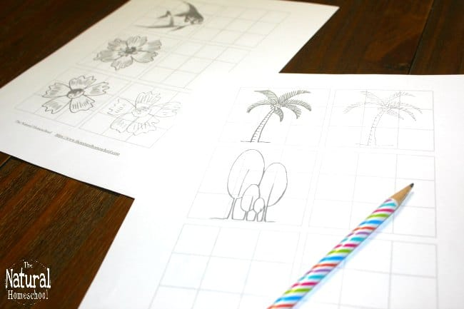 In our famous artists for kids series, we learn something new about every artist. Let's skip over the Linnaeus system of classification this time and jump over to the artistic side of his life. We will learn to make sketches and drawings like Linnaeus with this awesome set of printable pages!