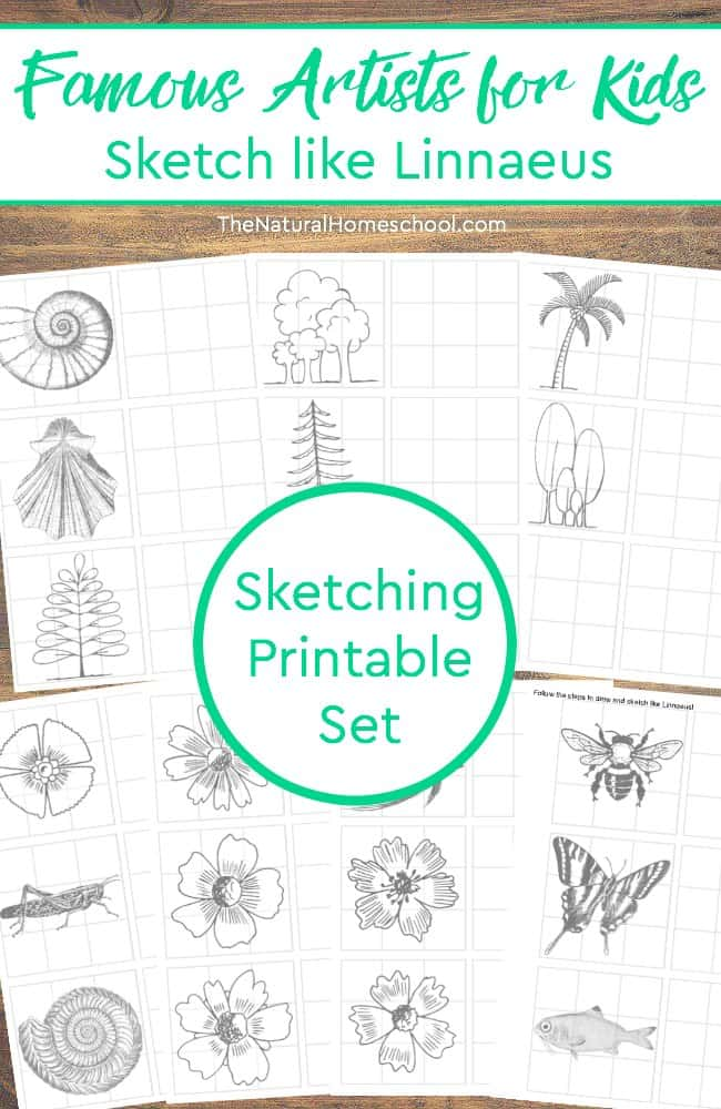 Are your kids learning about famous artists this school year? This is a printable in the Famous Artists for Kids series! This pack  includes printable sketch pages like Linnaeus, the famous botanist/artist.