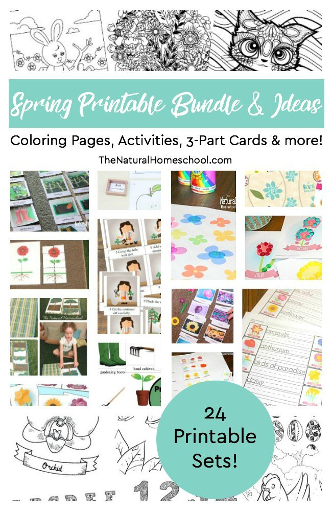 I am so excited that I found a whole 24 Spring printable coloring pages, activities, 3-part cards and more! Plus, a long list of many awesome activities. Come look!