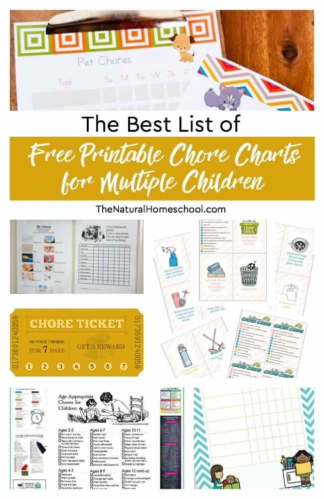 In this post, you will find the best list of free printable chore charts for multiple children, age-appropriate chore lists and more resources that will help you do just that!