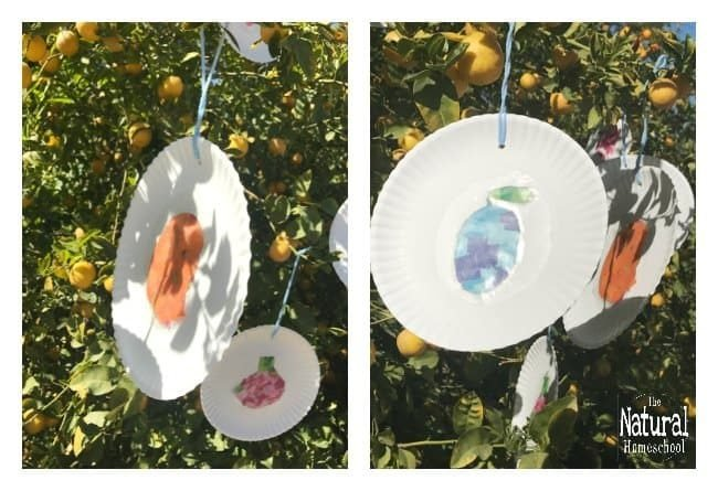I have put together some very hungry caterpillar printables to make beautiful sun catchers! Come and see how we made them and how they turned out so amazing and grab the printable hungry caterpillar fruit!