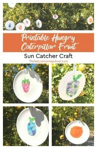 Printable Hungry Caterpillar Fruit ~ Sun Catcher Craft