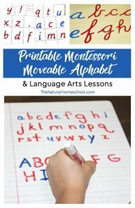 Printable Montessori Moveable Alphabet & Lessons