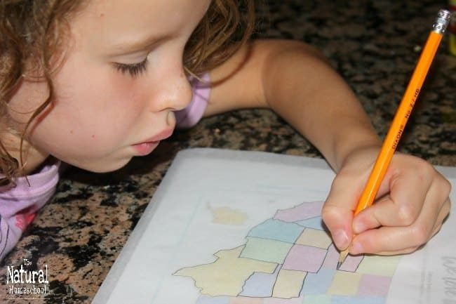 If you have young kids just learning about the great country of the United States, then this Tour of the USA post is the one you need! This is the perfect intro to the map of the United States of America! In this post, you will get three awesome activities a double map of the United States and a coloring book! Kids will love this lesson because it is hand-on and fun!