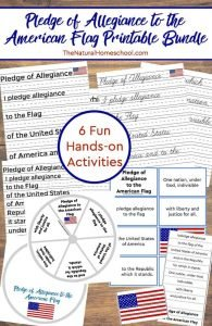 "A Fun ""I Pledge Allegiance to the Flag"" 6 Printable Sets (+2 Bonus) Bundle"