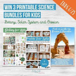 Printable Bundles Giveaway Time! Ends June 25th!