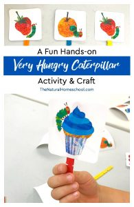 A Fun Hands-on Very Hungry Caterpillar Activity & Craft