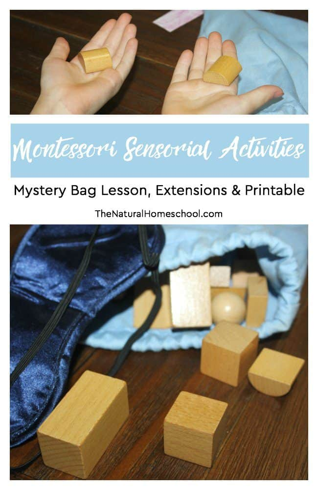In this post, we show you an easy, but very profound Mystery Bag Lesson. It includes an introductory lesson and two extensions, aside from the main presentation of this Sensory work.  And we also include a set of printables that will help you with this lesson.