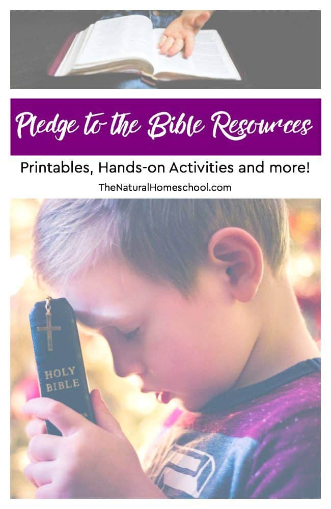 Here is a great list of Bible pledge ideas, activities and printables to help you bring this important pledge into your home. I think you will find this list helpful.