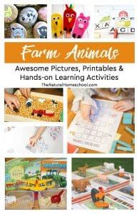 Awesome Farm Animal Pictures, Printables & Hands-on Learning Activities