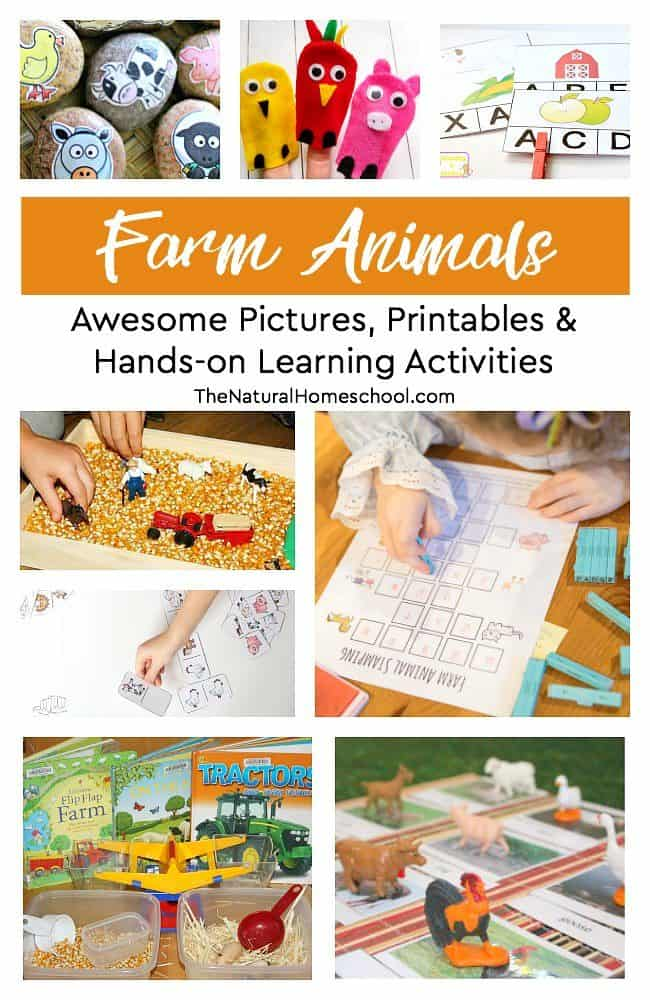 Awesome Farm Animal Pictures, Printables & Hands-on Learning