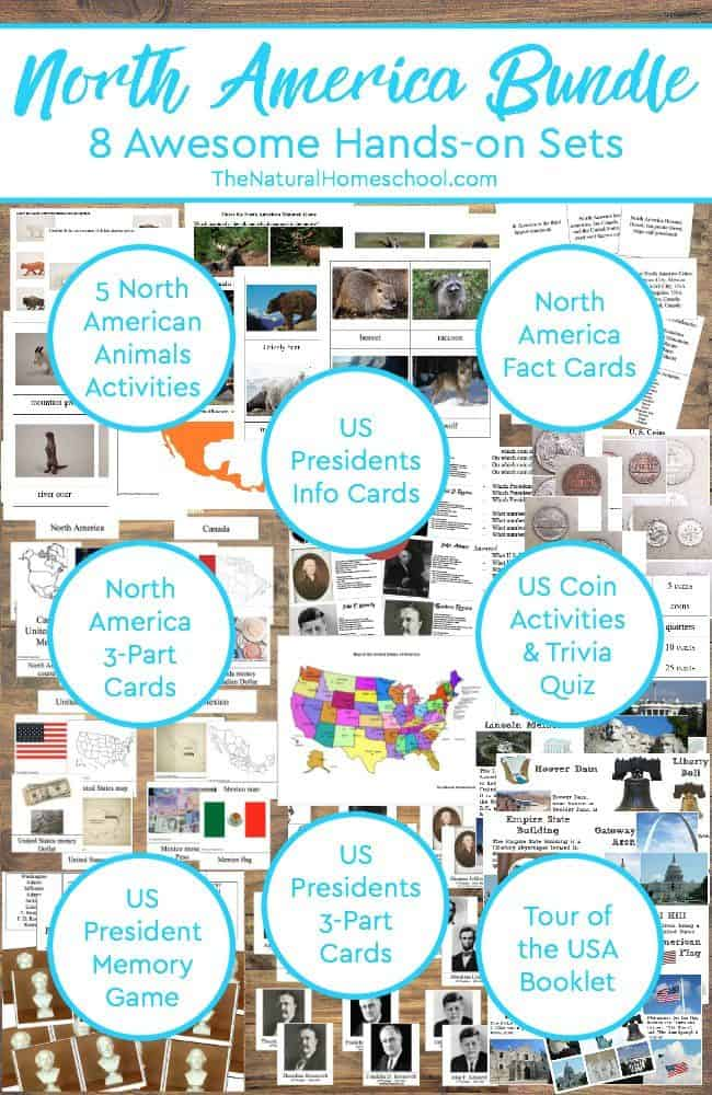 This is one of the units we did on North America countries. There are 8 sets with a total of about 12 activities (a total of 40 pages).