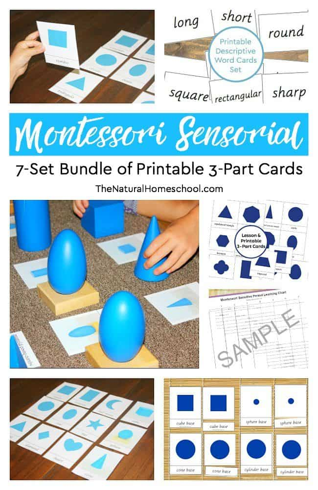 We are very excited to share with you the 7 printable Montessori Sensorial materials we have been using in our homeschool.