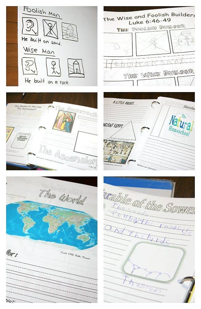 Printable Books of the Bible Worksheets & Complete