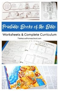Printable Books of the Bible Worksheets & Complete Curriculum