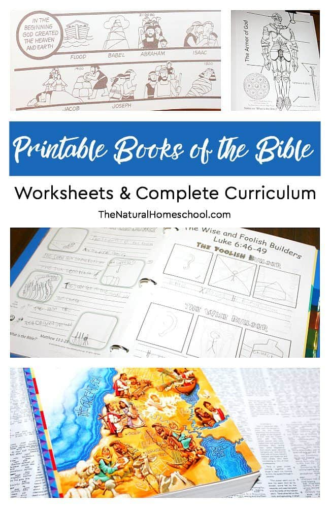 photo regarding Books of the Bible Printable named Printable Guides of the Bible Worksheets Detailed