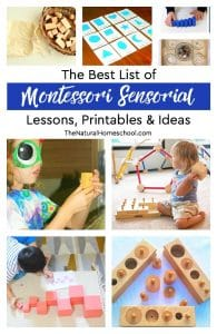 The Best List of Montessori Sensorial Lessons, Printables & Ideas