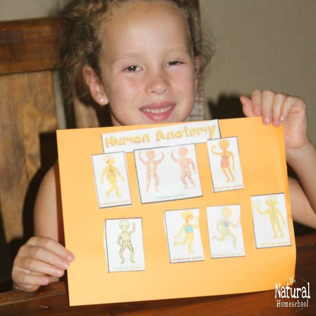 Kids will love to learn about anatomy with The Human Body System Bundle! It includes 8 amazing activities that are easy to follow and full of fun.