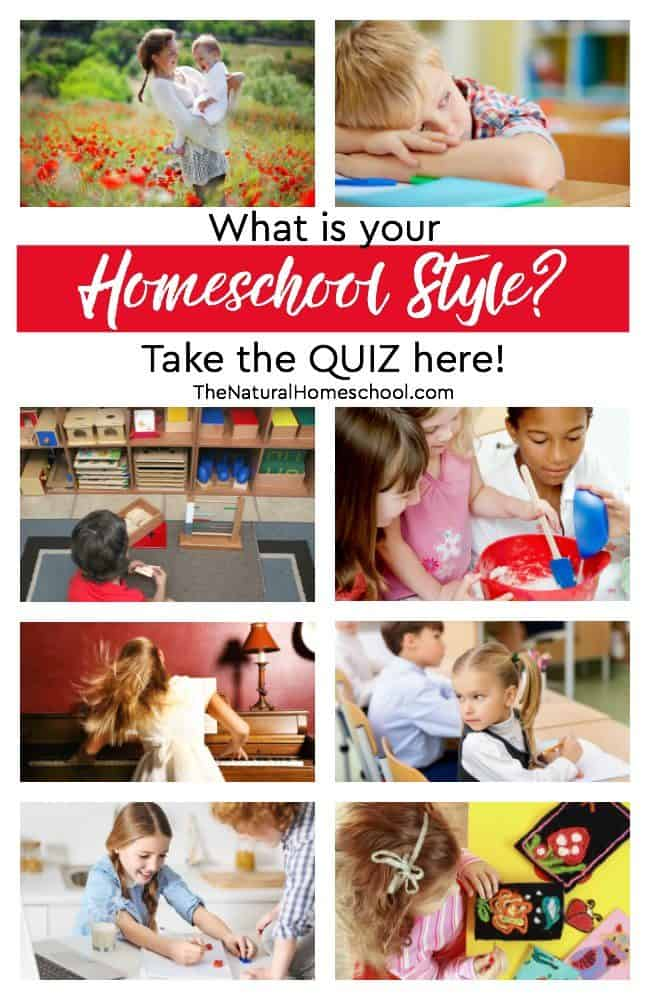 Today, we will be discussing 7 different homeschooling methods and offering a free homeschool styles QUIZ to help you decide which way to go.