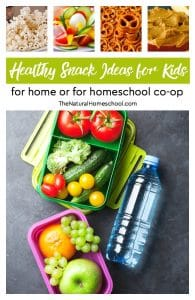 50+ Healthy Snack Ideas for Kids {for Home or for Homeschool Co-op}