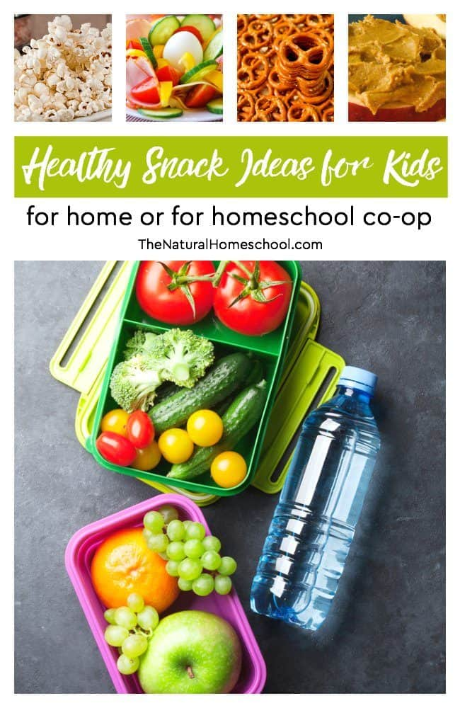 Are you looking for ideas for healthier snacks for kids? It's here ! I have made a list of healthy snack ideas for kids that you can have at home or for homeschool co-op.