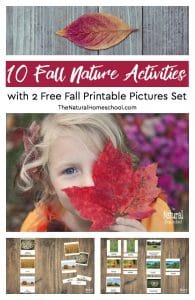 10 Fall Nature Activities (with 2 Free Fall Printable Pictures Set)
