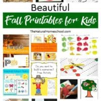 Beautiful Fall Printables for Kids