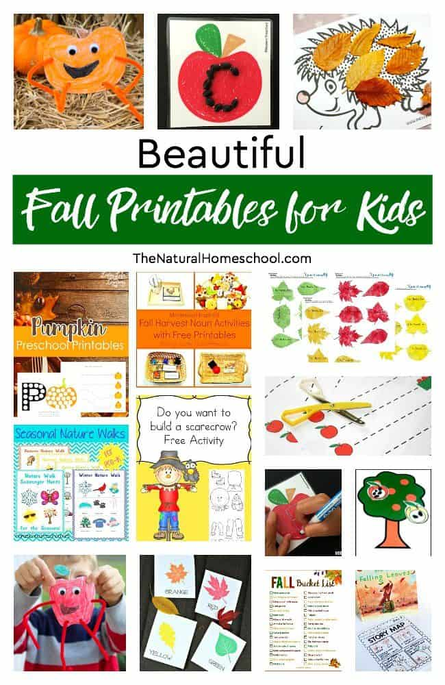 To celebrate Fall, we are including some beautiful Fall printables for kids into our homeschool. Come and take a look at our long list of great ideas.