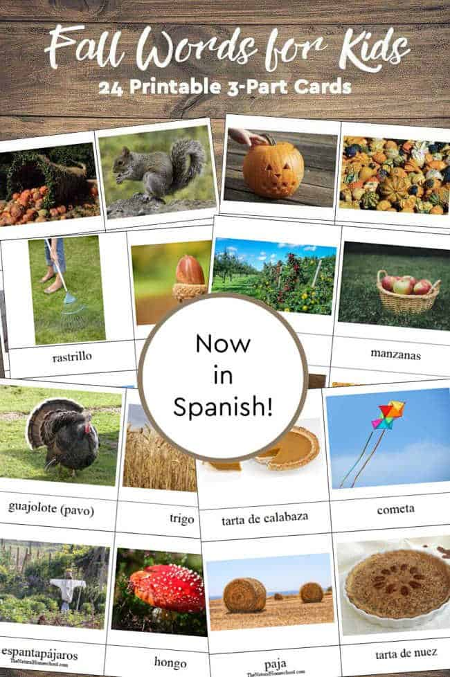 To celebrate Fall, here is a great set of Fall printable pictures, but this time, in Spanish! Come and get this lovely set of 3-part cards and let the Fall fun begin!