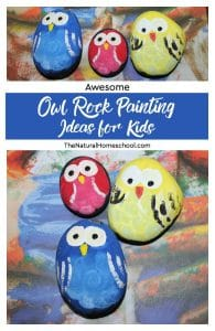 Awesome Owl Rock Painting Ideas for Kids