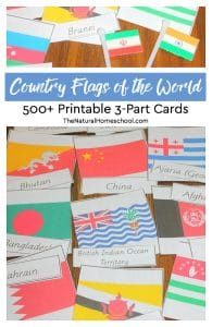 Country Flags of the World ~ 500+ Printable 3-Part Cards