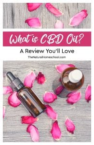 What is CBD Oil? A Review You'll Love {Discount Code}