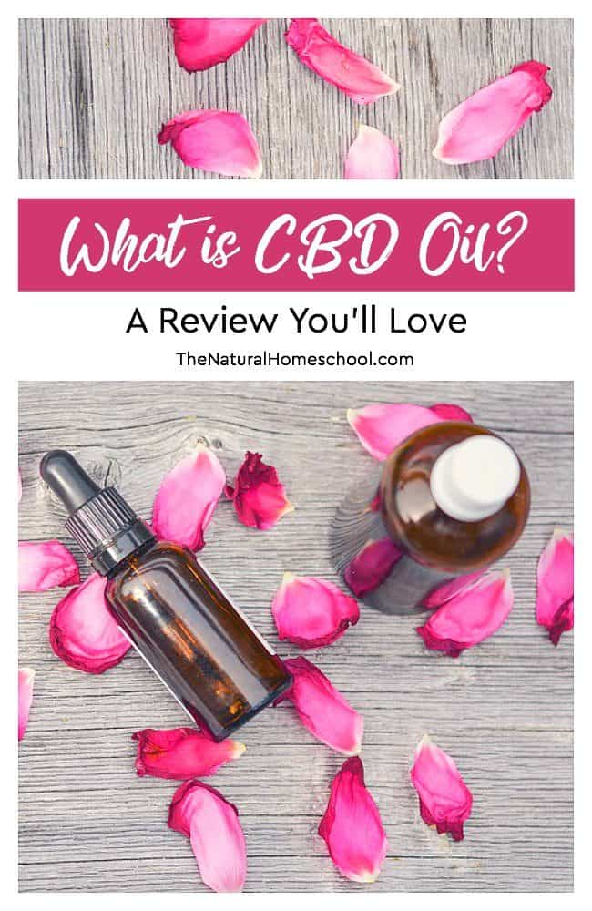 In this post, I will give you some important information about CBD oil as well as give you an honest review.